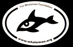 Whaleman Sticker
